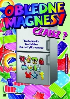 Obłędne magnesy - 74 gr/szt brutto